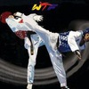 Тхэквондо ЦСПР/Taekwondo/ Taekwondo WTF