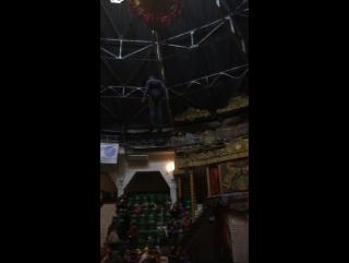 Под купол цирка)