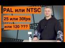 PAL или NTSC Что выбрать в Экшн-Камере 25 или 30 кадров