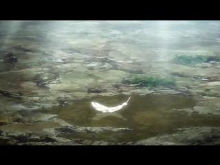 Атака титанов OVA 4
