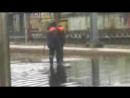 вилами по воде