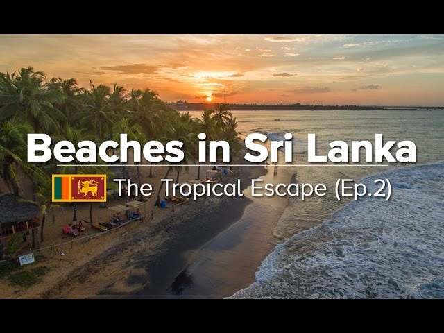 10 Best Beaches in Sri Lanka - East/South/West Coast (Tropical Escape 2)