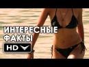ФОРСАЖ 7 Интересные Факты О Фильме (2015) HD