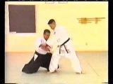 Aikido Yoshinkan - Takeshi Kimeda for 2 dan part1