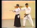 Aikido Yoshinkan - Takeshi Kimeda for 1 kyu part1
