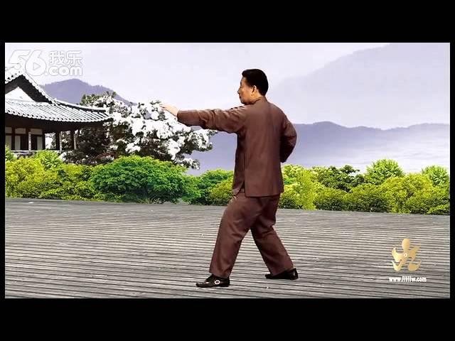 9er Form Chen Xiaowang