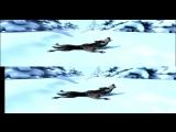 Маша и медведь  Следы невиданных зверей  4K 3D
