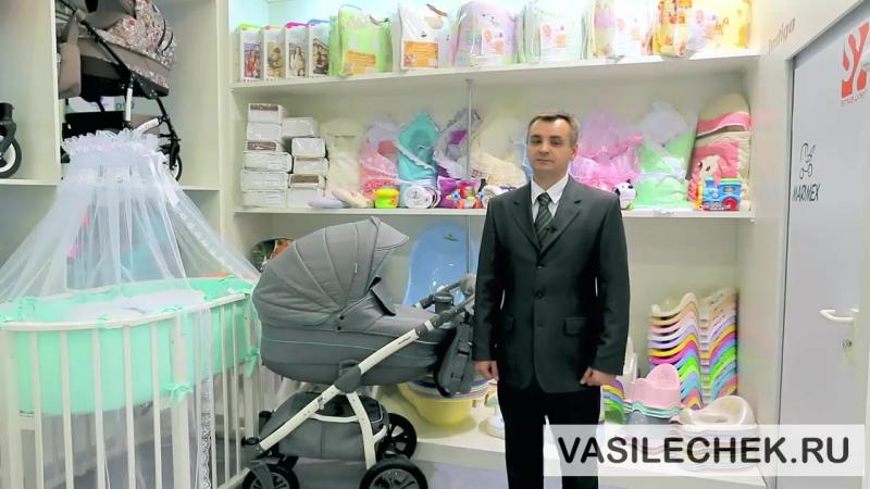 Детская коляска Indigo Carmen 2 в 1 2017 vasilechek.ru 3 в 1 Indigo S Plus, Caretto Montana, Aro Team Enzo 3 в 1