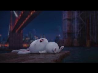 Отрывок из мультфильма Тайная жизнь домашних животных