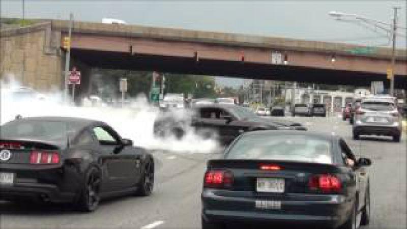 EPIC Burnout Shelby GT500 Super Snake Diesel Truck Pulled Over Sick Burnout Mustang Cobra