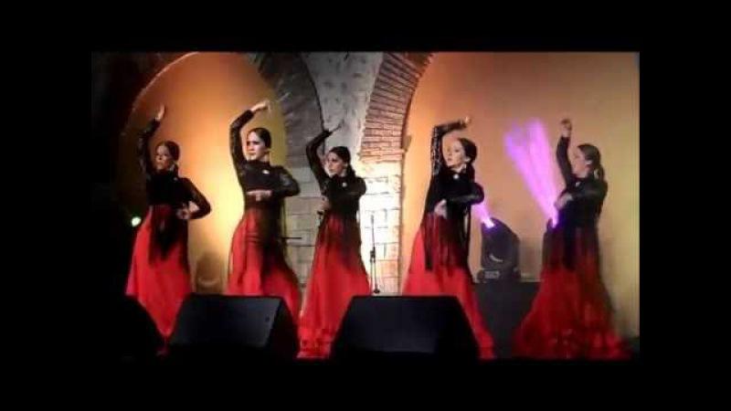 Baile flamenco, испанский танец фламенко,(3), Alhaurin de la Torre, Malaga, 27/05/2016