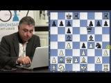 Fischer, Spassky, Larsen Miniatures  Games to Know by Heart - GM Yasser Seirawan