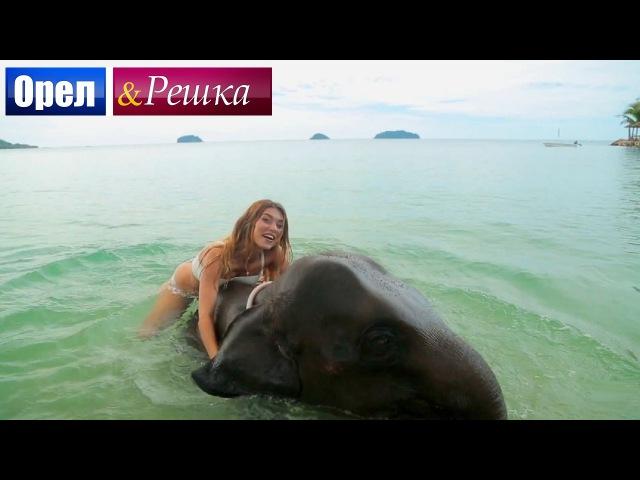 Орел и решка. Рай и Ад - Райский Таиланд | Паттайя (1080p HD) - ПРЕМЬЕРА!