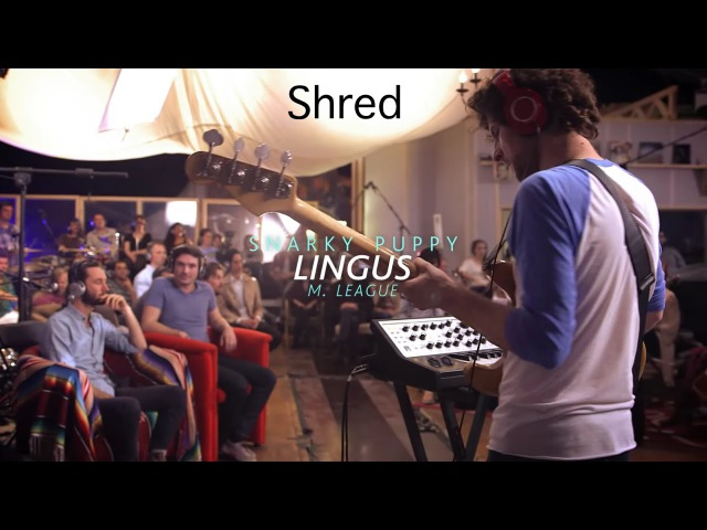 Snarky Puppy Lingus Shred