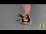 Экспериментатор. Эксперимент. Фараонова змея из глюконата кальция.
