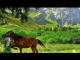 Рамик Рамазанов🎤🎵-Лезги халкь (студия Элит)