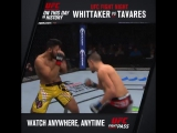 On This Day Whittaker vs. Tavares