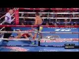 Lomachenko KO vs Rocky Martinez