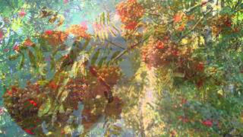 БЕРЁЗА из сериала Райские яблочки