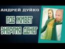 ГДЕ ЖИВЕТ ЭНЕРГИЯ ДЕНЕГ.Андрей Дуйко