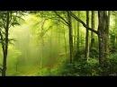 Prog Trance Prog Psytrance Mix HOPE melodic morning set set 10