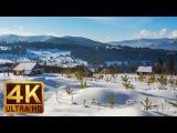 Winter in the Carpathians 2017 Snowy Winter Scenes 4K Nature Video - Trailer 47