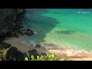 Видео в HD для занятия йогой, красивое релакс видео и музыка со звуками природы manani ru - YouTube