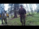 Бешеная лошадь с бревном )