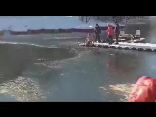 Житель Симферополя спас провалившуюся под лёд собаку
