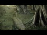 Franz Schubert Serenade (Франц Шуберт
