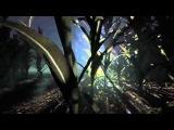 Первыый геймплей Outlast 2