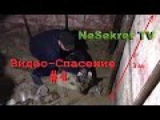 Видео - Спасение 4. Собака в яме. Город Улан-Удэ