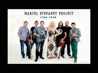 Marcel Stefanet Project -