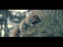 REDNEK FEAT SEAN BYRNE CONSPIRACY OFFICIAL VIDEO