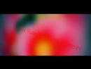 Горіла сосна палала - 360P