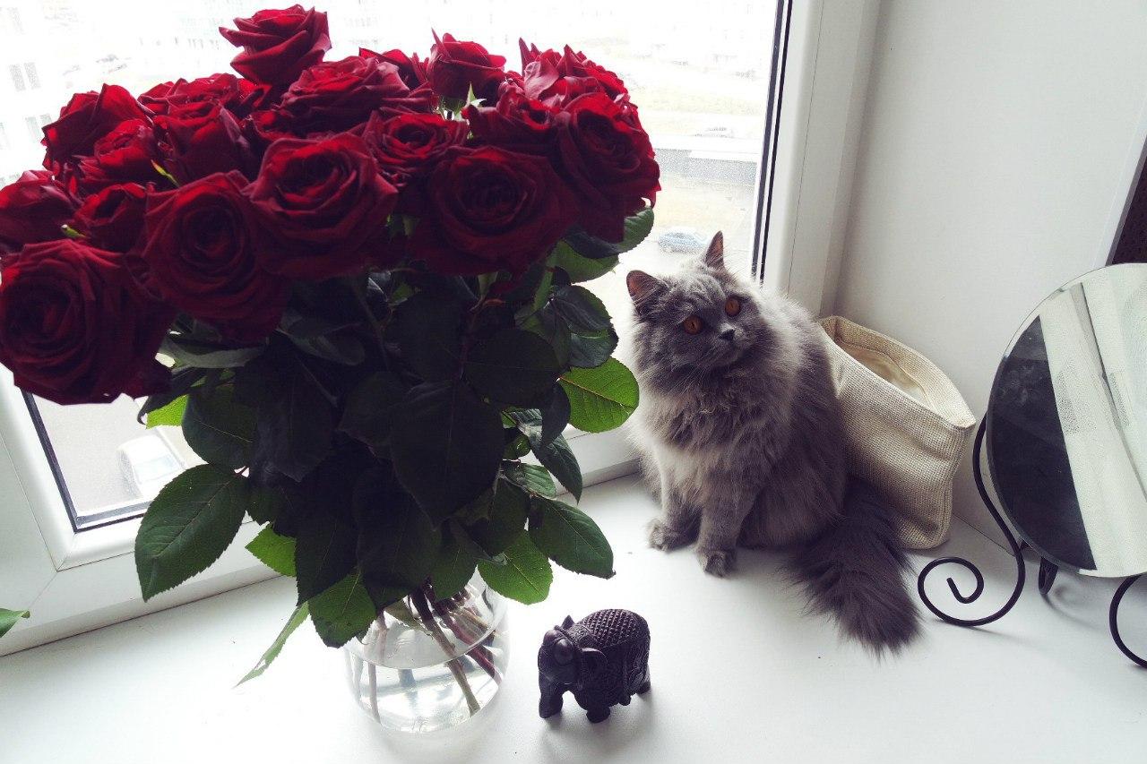Фото букетов цветов в квартире