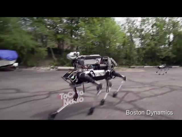 Фобия робота bostondynamics tcnpublic · coub