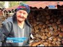 Пенсионерка-отшельница охраняет лес