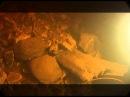 Предельная глубина: Подводная археология в Новгороде Великом (2009)