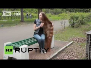 LiveLeak com Russia Meet Siberia's 'Rapunzel', the Instagram icon whose hair reaches her SHINS