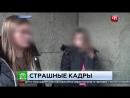 Две студентки живодерки из Хабаровска