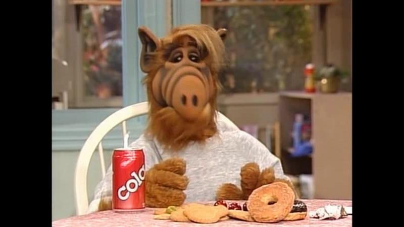Alf Quote Season 4 Episode 13 Альф Кейт и Вилли