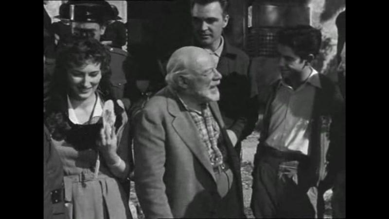 Calabuch (1956, España, Italia, Luis García Berlanga, comedia)