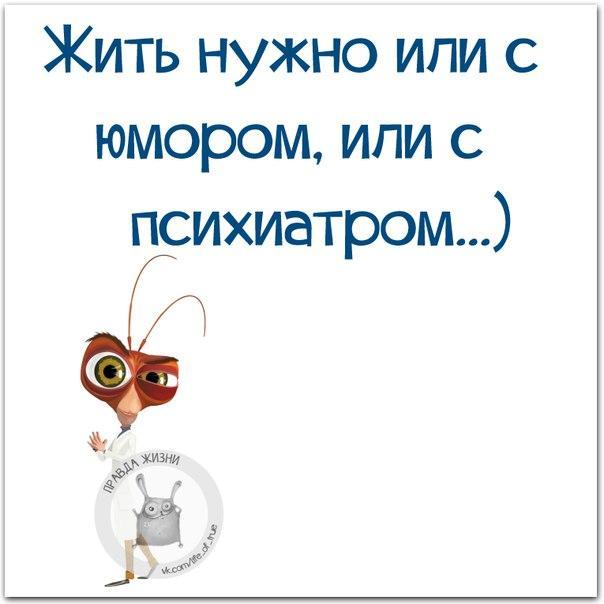 https://pp.userapi.com/c626716/v626716662/2642d/SGGe41mtYVg.jpg