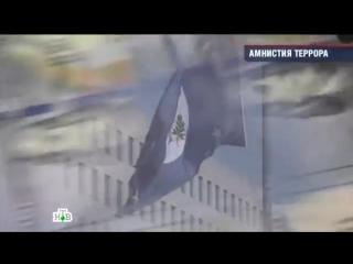 Амнистия Террора