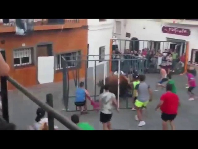 Raging Bull Breaks Into Cage And Attacks Man