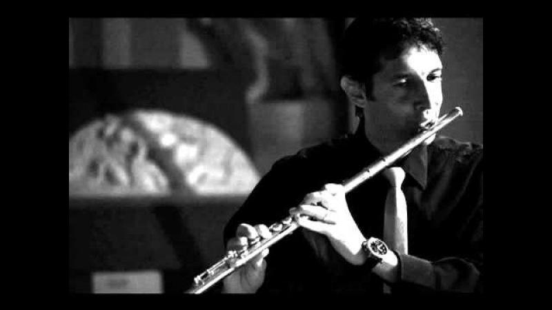 Pink Panther flute Klaus Gallerati