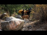 Swiftwater Safety Institute Rescue Vest Video