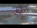 Спасение собаки в Гагаринском парке г. Симферополь