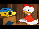 ᴴᴰ Donald Duck & Chip and Dale Cartoons Full Episodes - Pluto Dog, Daisy Duck New